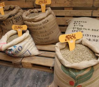 Moccaraba frische Kaffeebohnen